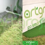 Before-After-Artgrass-Halaman-Belakang-Putting-Green-Rumput-Sintetis