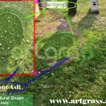 Perbandingan-ArtGrass-Dengan-Rumput-Aslli