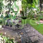 Before-After-Artgrass-Taman-Dalam-Pagar-Rumput-Sintetis