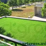 Rumput-Sintetis-ArtGrass-Balkoni-Dek-Atas-Rumah (2)