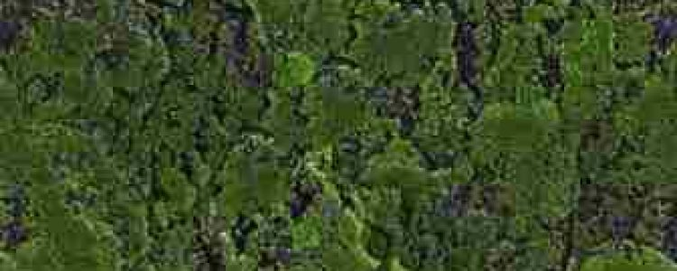 ArtMoss Fabric Soil