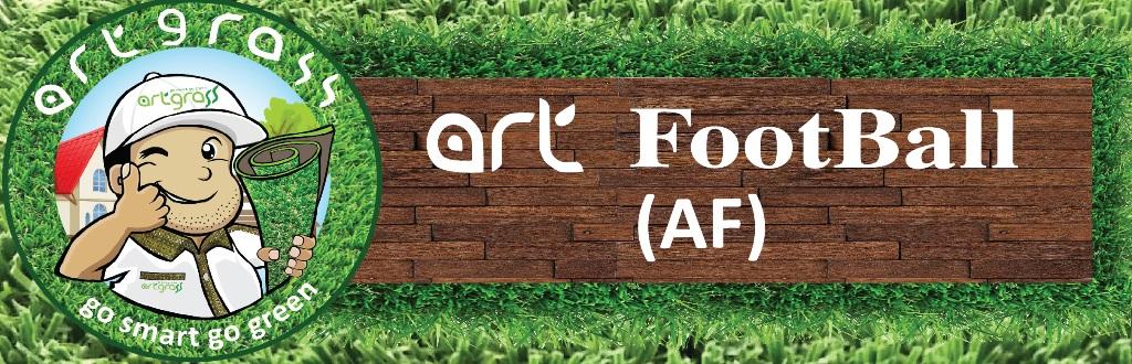 ArtFootBall